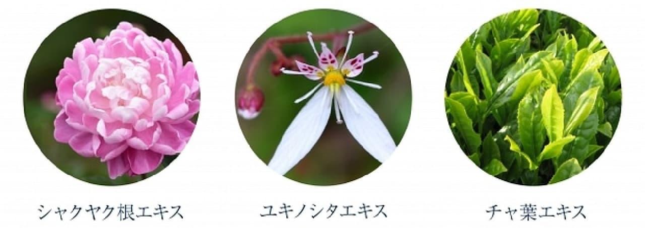 ピオリナ クリーミーウォッシュの和漢エキス3種類