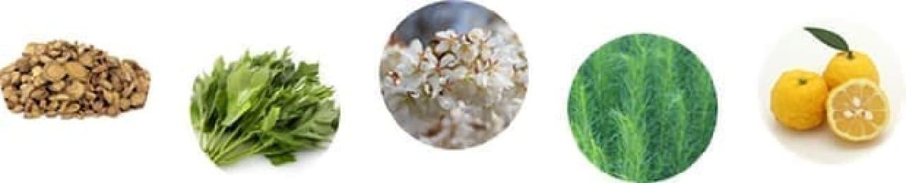 スワティー「ロウ ハンド ケア クリーム」の配合成分