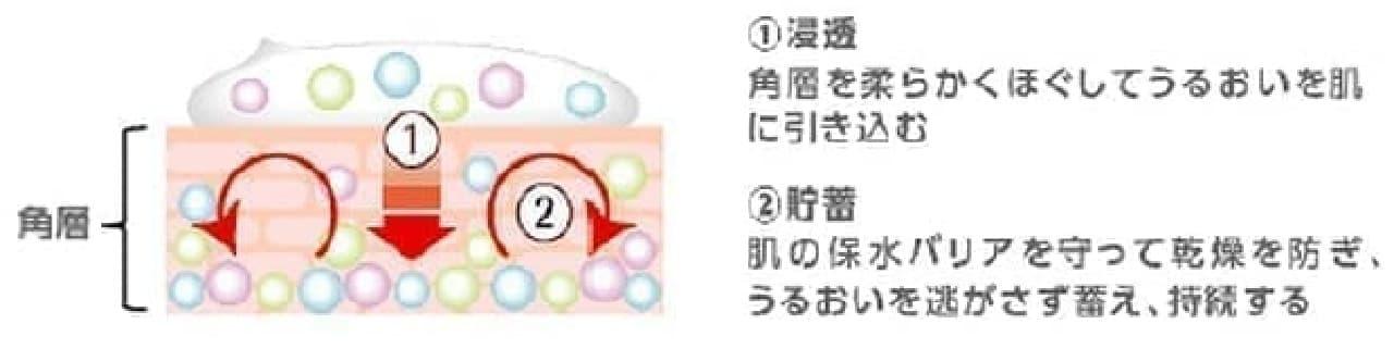 アクアレーベル スペシャルジェルクリームA (モイスト) Sの説明